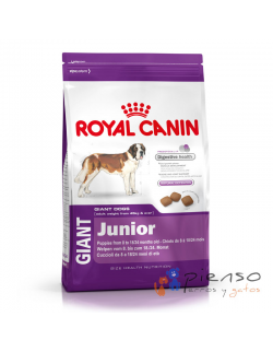 Pienso para perros Royal Canin Giant Junior