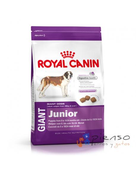 Pienso para perros Royal Canin Giant Junior