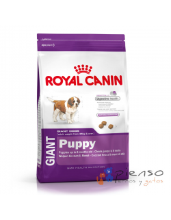 Pienso para perros Royal Canin Giant Puppy