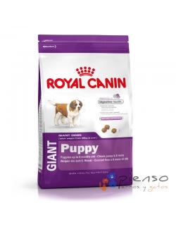 Pienso para perros Royal Canin Giant Puppy