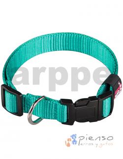 Collar para perros ajustable de nylon turquesa básico