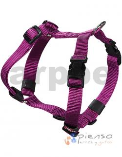 Arnés Básico Nylon  Púrpura