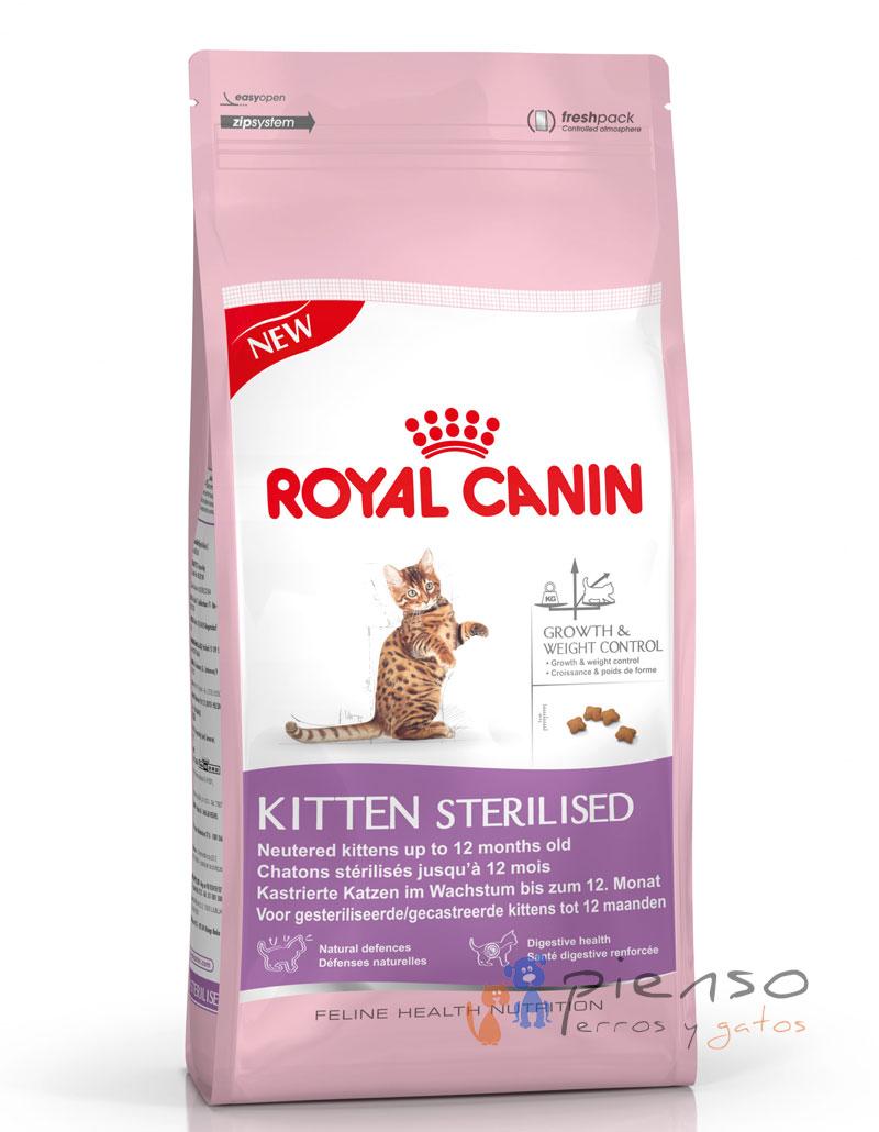 royal canin kitten sterilised comida para gatos. Black Bedroom Furniture Sets. Home Design Ideas