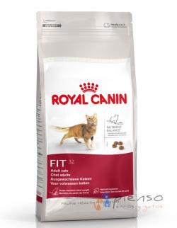 Comida para gatos Royal Canin Fit 32