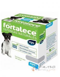 Viyo Fortalece Puppy