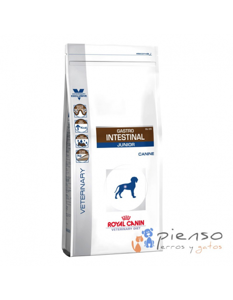 Gastro Intestinal Junior Dry